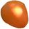 甲州百目 柿